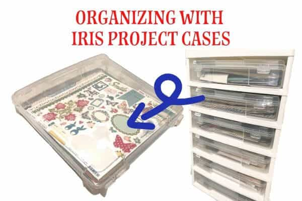 Organizing with Iris Project Cases
