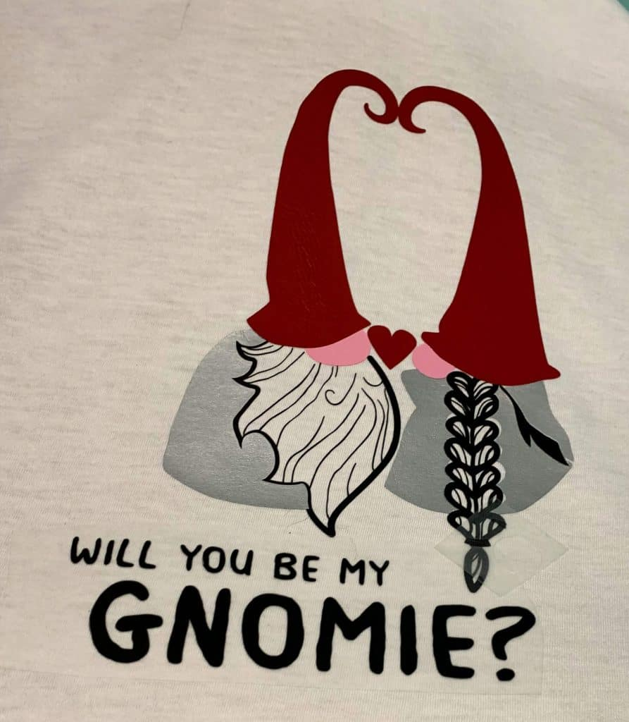 Will You Be My Gnomie