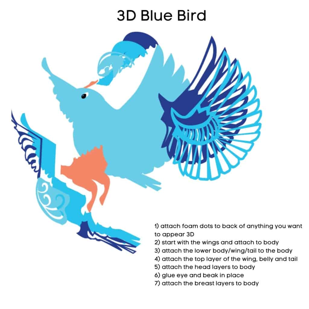 Instructions for putting blue bird together